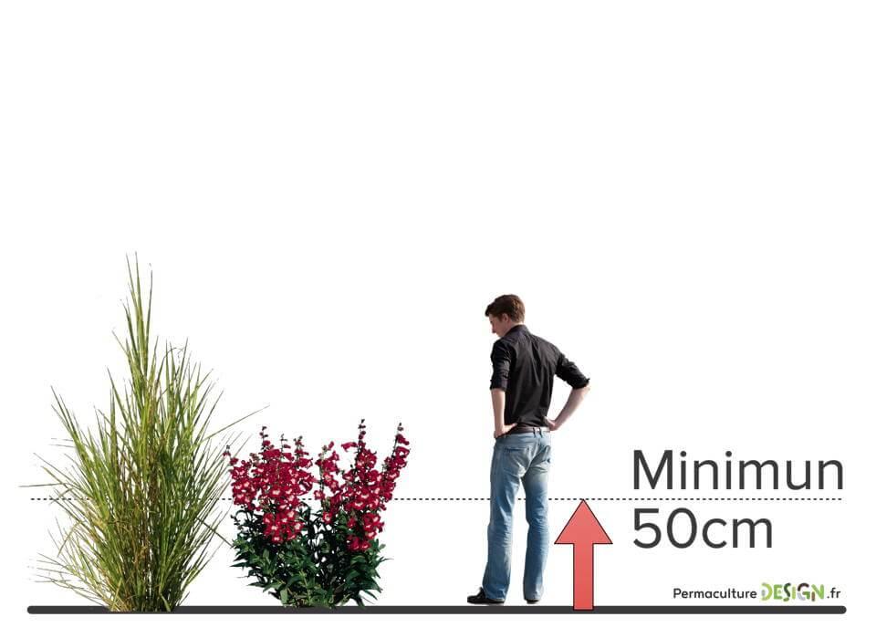 Choisissez vos plantes pour cr er votre jardin for t - Creer son jardin virtuel gratuit ...