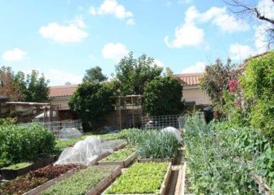 ferme-urbaine-production-nourriture-autonomie-alimentaire-autosuffisance-formation-permaculture-design_05