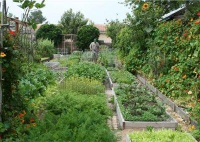 ferme-urbaine-production-nourriture-autonomie-alimentaire-autosuffisance-formation-permaculture-design_06