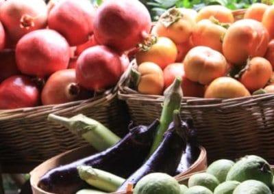 ferme-urbaine-production-nourriture-autonomie-alimentaire-autosuffisance-formation-permaculture-design_09