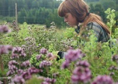 Le film sur Ridgedale Permaculture en Suède nous plonge dans le quotidien de celles et ceux qui font de cette ferme un lieu innovant et régénérateur.