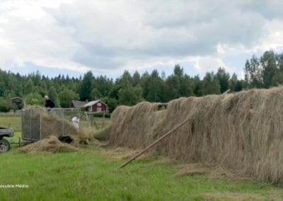 film-documentaire-ferme-ridgedale-permaculture-formation-permaculture-design_04
