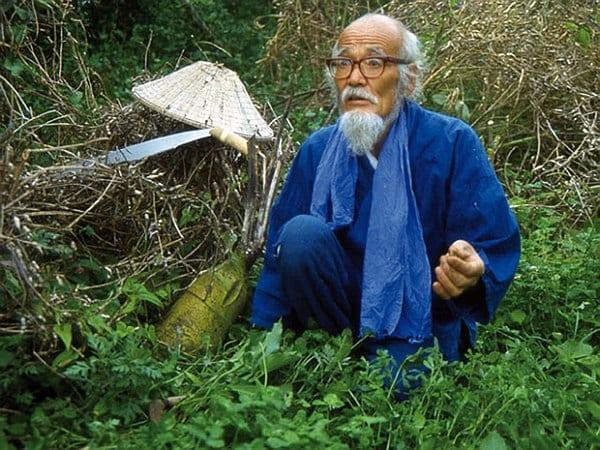 Pionnier de la permaculture, Masanobu Fukuoka approfondit son art du non-agir dans son second livre « L'agriculture naturelle ».