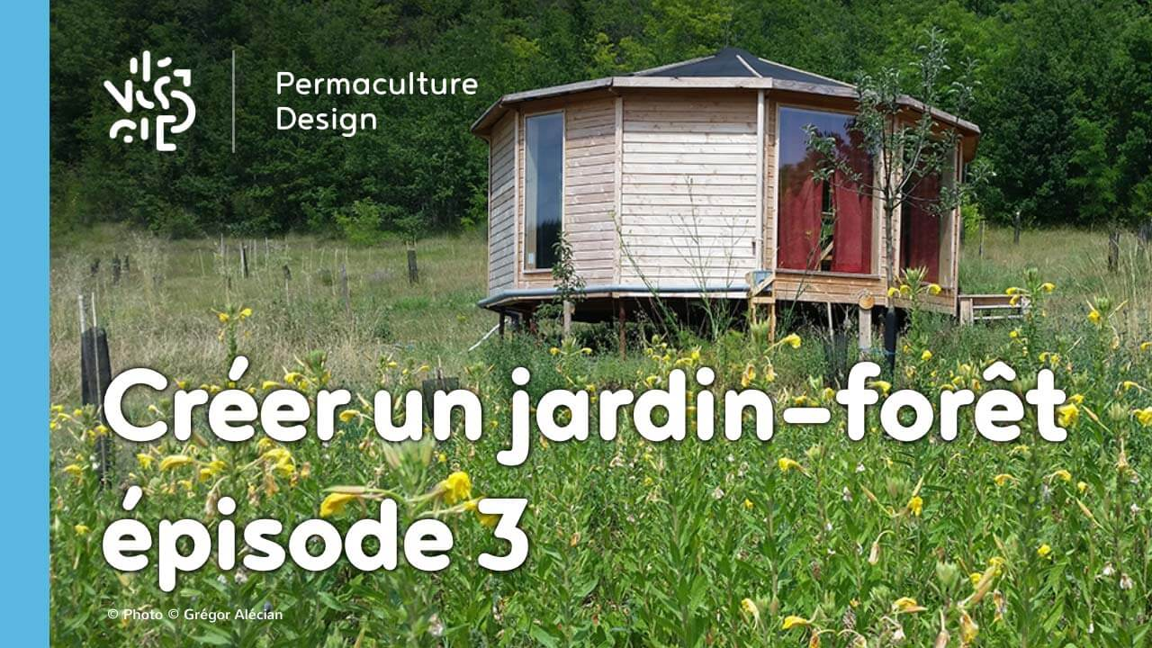 cr er un jardin for t en permaculture pisode 3. Black Bedroom Furniture Sets. Home Design Ideas