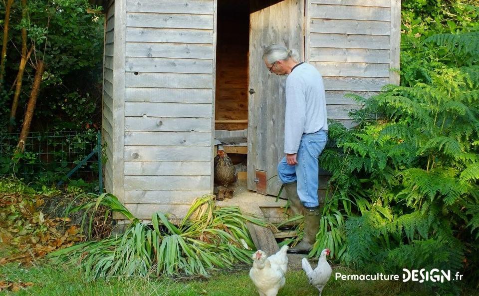 Conseils pour cr er un poulailler confortable et pratique for Installer un poulailler dans son jardin