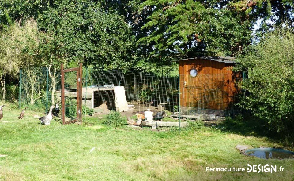 Hervé Husson nous conseille pour créer un poulailler confortable et pratique pour les poules comme pour les éleveurs.
