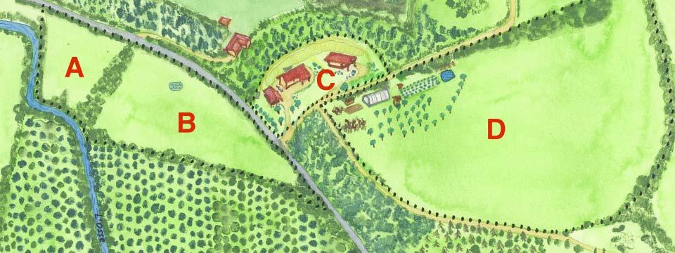 Réussir son installation de maraîchage en permaculture est avant tout une affaire de design pour éviter les erreurs.