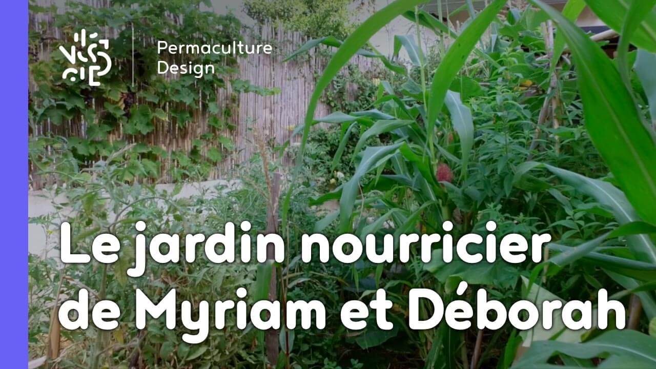 un parking transform en jardin nourricier gr ce au design de permaculture le t moignage de. Black Bedroom Furniture Sets. Home Design Ideas