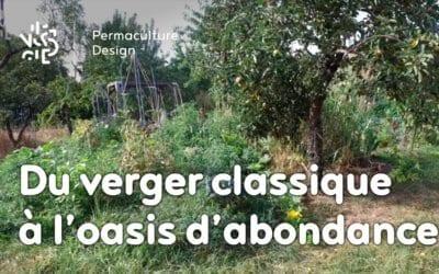 D'un verger classique à une oasis d'abondance : le design en permaculture de Julie et Ludovic.