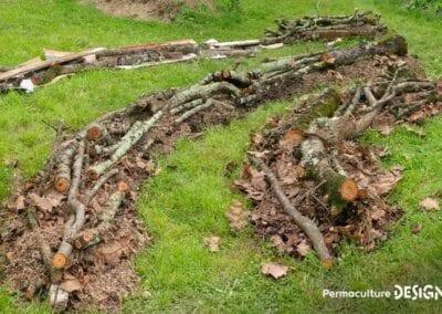 verger-jardin-foret-abondance-autonomie-alimentaire-formation-permaculture-design_06