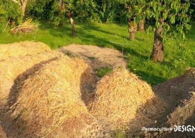 verger-jardin-foret-abondance-autonomie-alimentaire-formation-permaculture-design_07