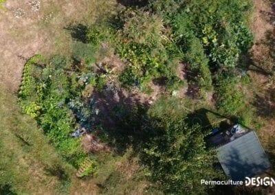 verger-jardin-foret-abondance-autonomie-alimentaire-formation-permaculture-design_10