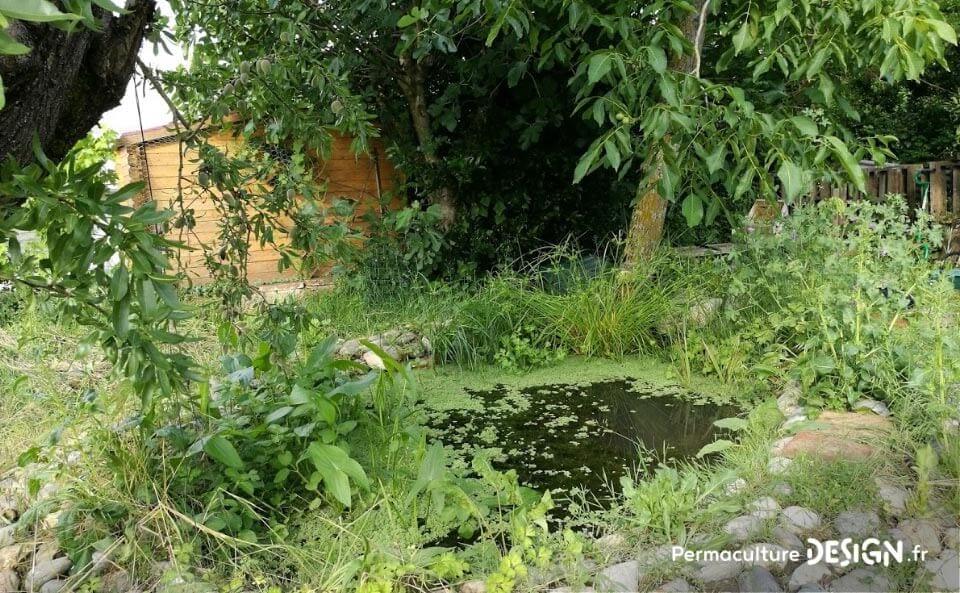 Julie et Ludovic ont réussi à transformer un verger classique en jardin d'abondance grâce au design de permaculture.