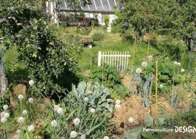 verger-jardin-foret-abondance-autonomie-alimentaire-formation-permaculture-design_23