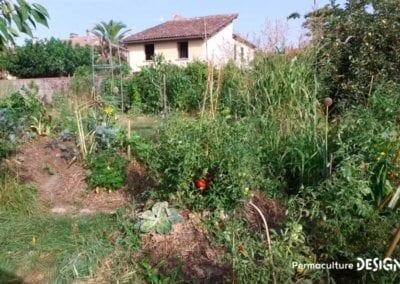 verger-jardin-foret-abondance-autonomie-alimentaire-formation-permaculture-design_27