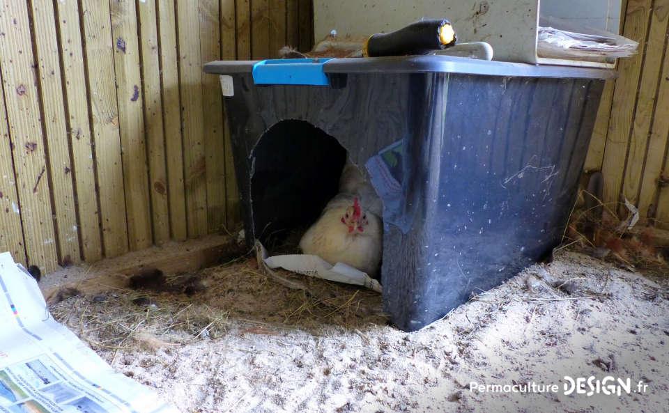 Hervé Husson nous conseille sur les meilleurs équipements pour un poulailler confortable et pratique pour les poules comme pour les éleveurs.