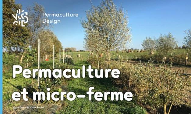 Comment transformer sa micro-ferme grâce à la permaculture ?