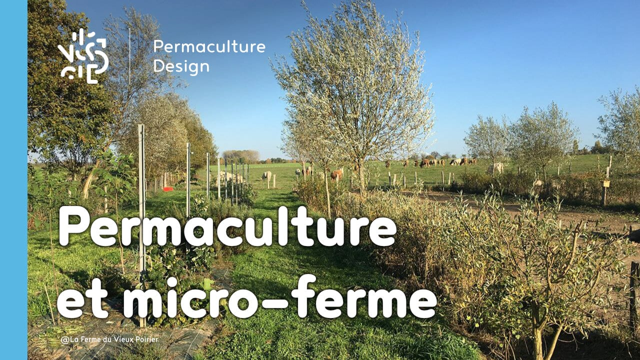 comment transformer sa micro ferme gr ce la permaculture. Black Bedroom Furniture Sets. Home Design Ideas