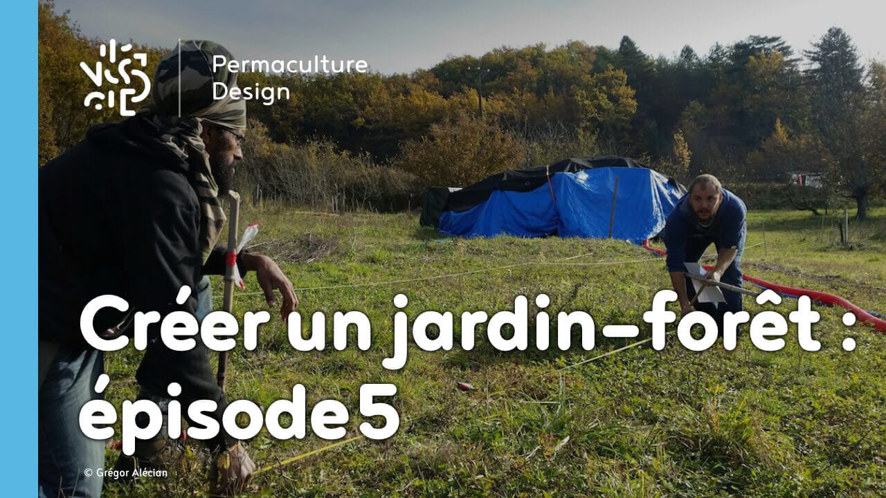cr er un jardin for t en permaculture pisode 5. Black Bedroom Furniture Sets. Home Design Ideas