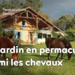 Un jardin en permaculture parmi les chevaux : le changement de vie de Mathilde