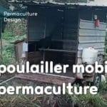 Les avantages d'un poulailler mobile en permaculture