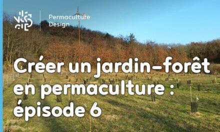Créer collectivement un jardin-forêt en permaculture: épisode6, les entretiens de la nouvelle année.