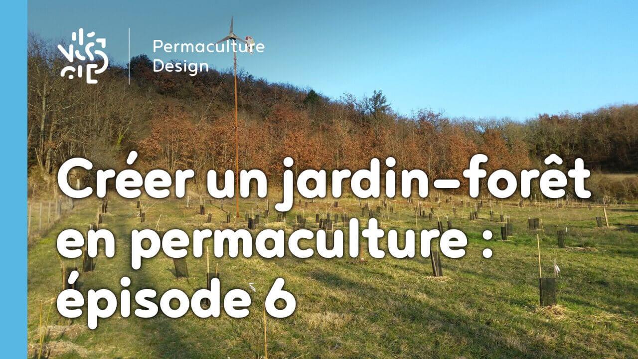 cr er un jardin for t en permaculture pisode 6. Black Bedroom Furniture Sets. Home Design Ideas