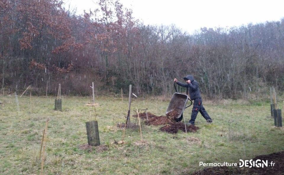Découvrez les soins et entretiens du sol réalisés cet hiver et les nouveautés mises en place au jardin-forêt en permaculture du projet TERA pour produire à terme un maximum de nourriture.