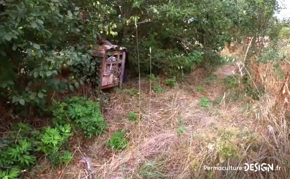 Le jardin en permaculture d'Olivier lui permet d'observer la nature, d'apprendre, d'expérimenter tout en inspirant son voisinage.