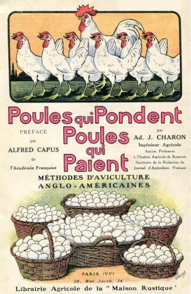 Hervé Husson nous raconte la vraie nature de la poule, ses origines et l'histoire de son élevage à travers les âges.