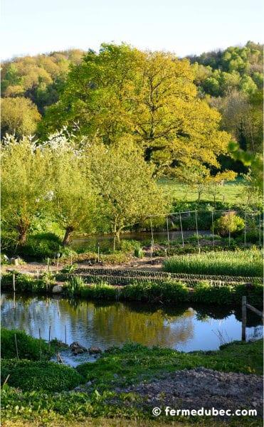 La ferme du Bec Hellouin, a été conçue par Perrine et Charles Hervé-Gruyer grâce aux principes de permaculture et la méthodologie de design.