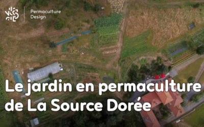 Le jardin en permaculture de la Source Dorée : du maraichage à l'assiette