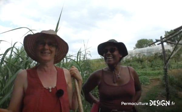 Un écolieu remarquable avec un jardin en permaculture où le maraîchage sert directement à fournir le restaurant de la maison d'hôtes.