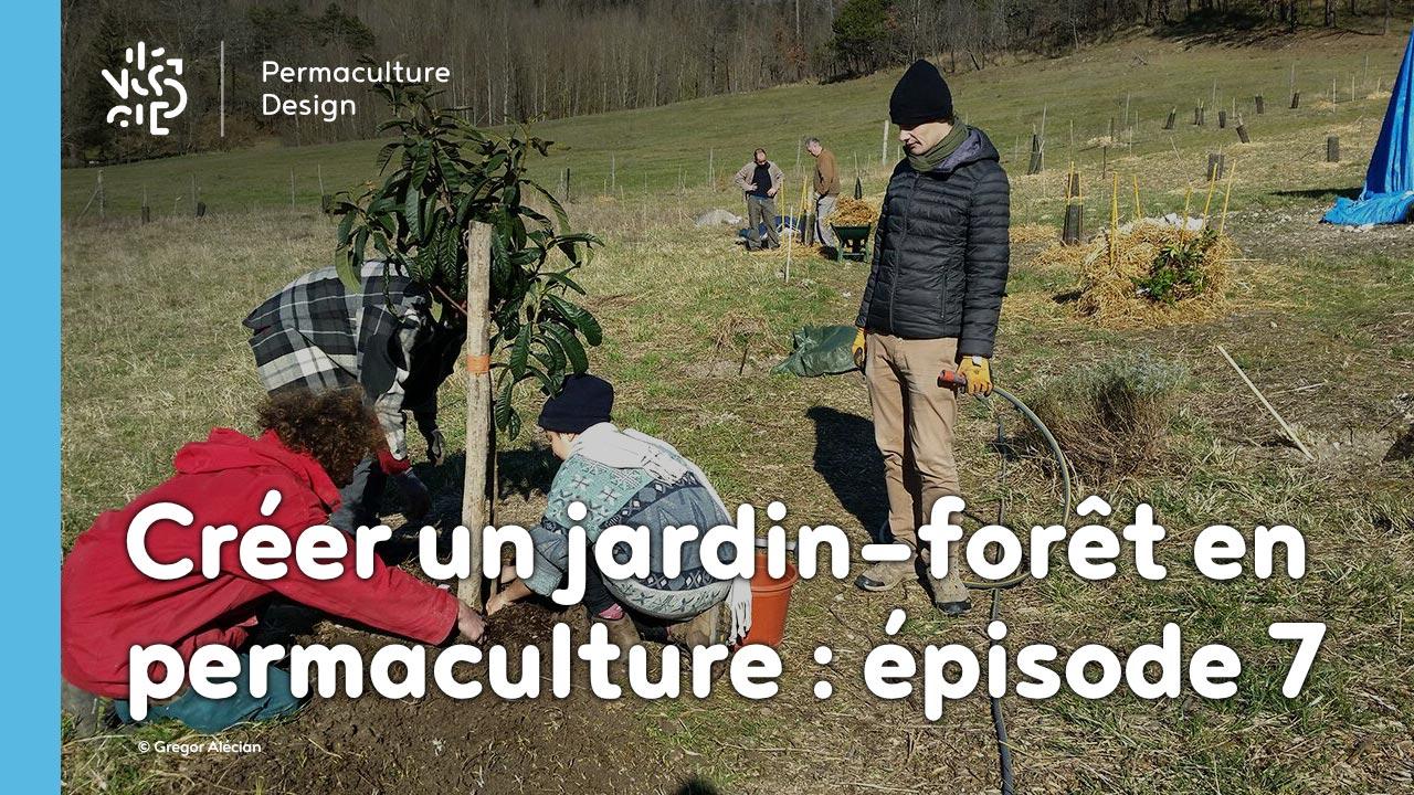 Créer collectivement un jardin-forêt en permaculture : épisode 7