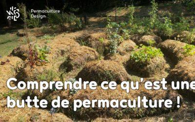 Une butte de permaculture, c'est quoi ?