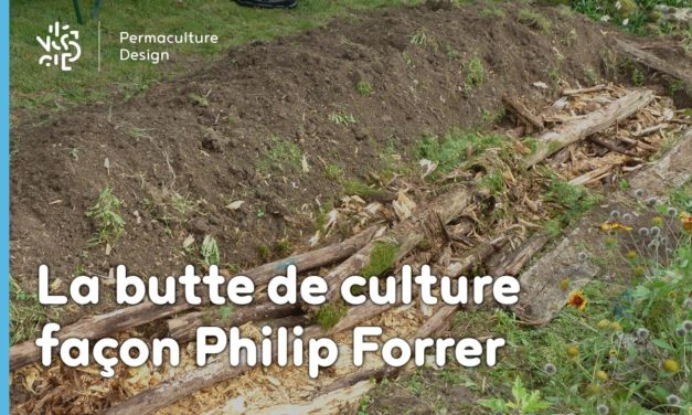 La butte Philip Forrer : une technique atypique