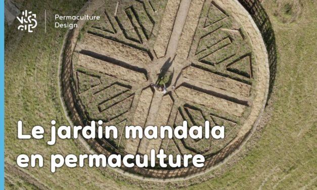 Le jardin mandala en permaculture : un support de culture beau et inspirant