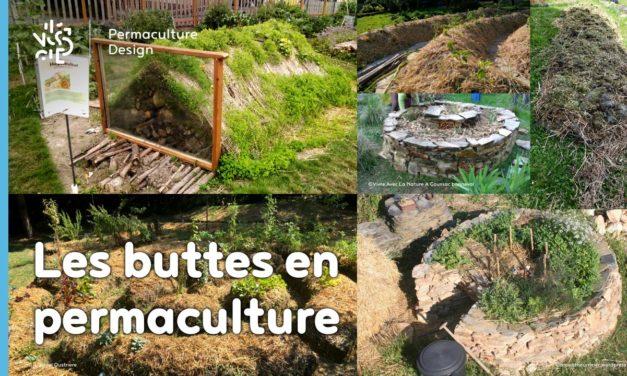 Butte de permaculture : le guide complet