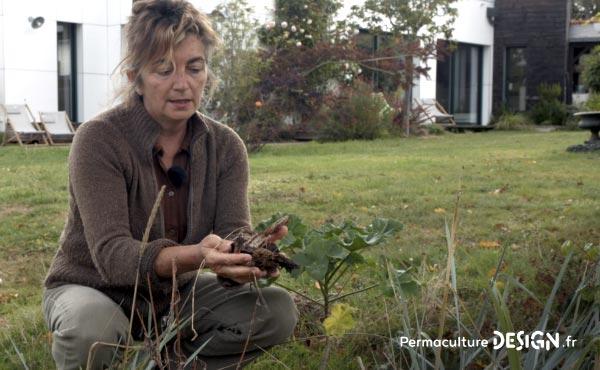 Grâce à la permaculture, Stéphanie a aménagé son jardin, s'est ouvert aux autres et a changé de vie pour retrouver sa place dans l'écosystème et de l'harmonie dans sa vie de tous les jours !