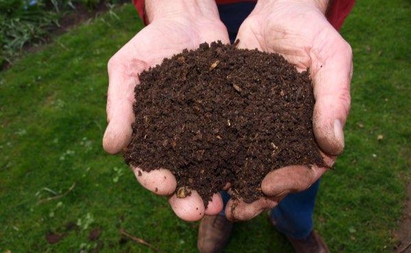 Un lombricomposteur permet de faire du compost simplement, c'est un super composteur d'appartement très efficace avec de nombreux avantages.