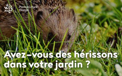 Avez-vous des hérissons dans votre jardin ?