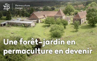 Un potager traditionnel devenu forêt jardin en permaculture