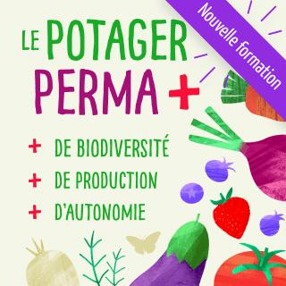Suivre un stage ou une formation de permaculture en vidéo.