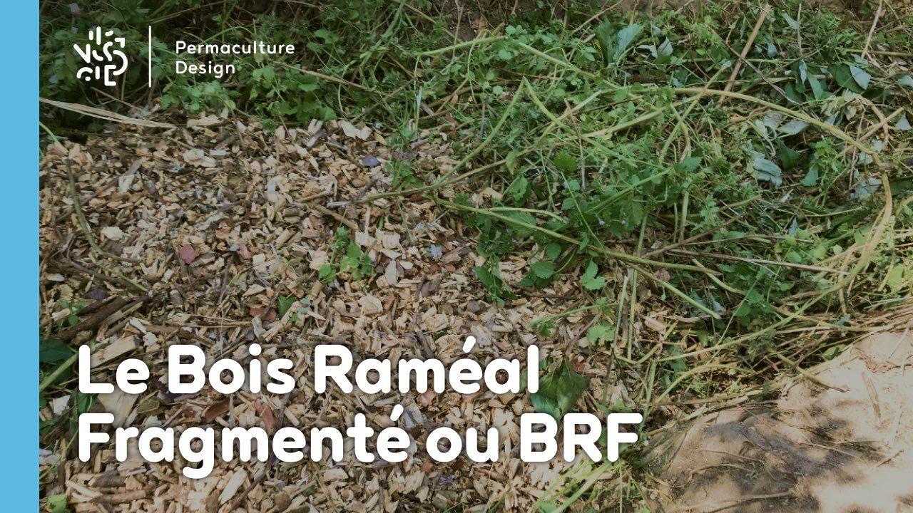 Le BRF (Bois Raméal Fragmenté) en paillage