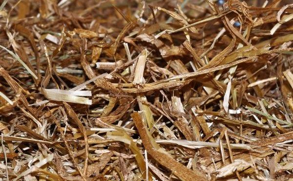 La paille est une matière sèche ne générant habituellement pas de fermentation ni de montée en température.
