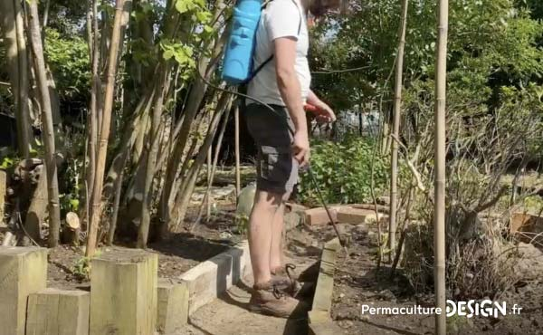 Le mélange eau / jus de fermentation Bokashi est ensuite pulvérisé très facilement au jardin.