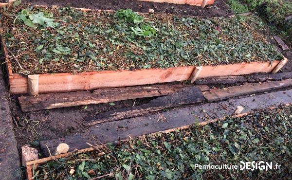 Buttes potagères nouvellement créées et paillées à l'automne avec du broyat de bois divers.