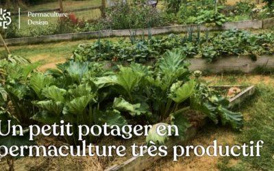 Permaculture au potager : 115 kg de récoltes sur 50 m2 dans un jardin familial