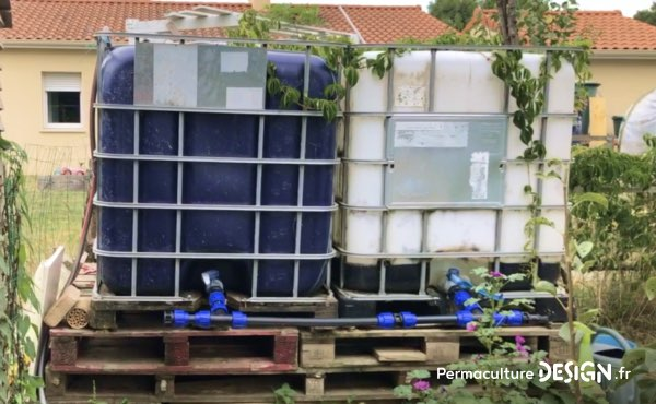 Surélévation des tonnes à eau dans le potager en permaculture de Sébastien pour lui permettre d'arroser au tuyau sans avoir à se baisser, pour faire avec ses problèmes de dos.