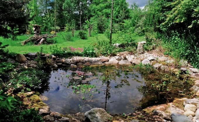 Une des mares naturelles créées par Gilles Leblais sur son lieu appelé «Mon jardin paradis» en Isère, ouvert au public sur réservation © Gilles Leblais